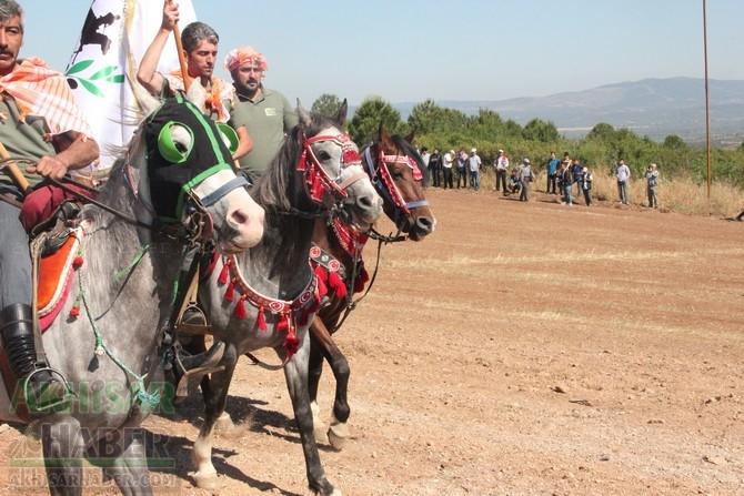 559.Çağlak Festivali Cirit ve Değnek atışları en güzel kareleri 1