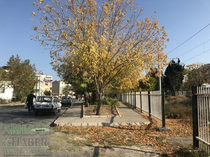 Pastırma sıcaklarında Akhisar'dan sonbahar manzaraları 1