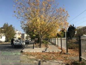 Pastırma sıcaklarında Akhisar'dan sonbahar manzaraları