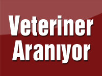 Veteriner Aranıyor
