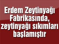Erdem Zeytinyağı fabrikasında zeytinyağı sıkımları başladı