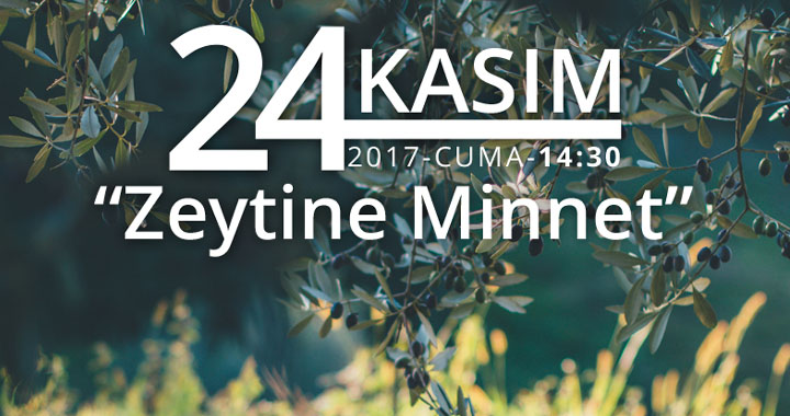 Zeytine minnet kortej yürüyüşü 24 Kasım'da yapılacak