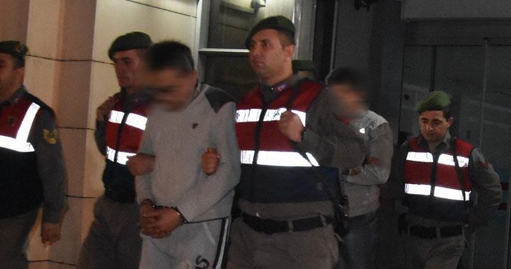 Akhisar'da Jandarma ekipleri hayvan hırsızları şebekesini çökertti