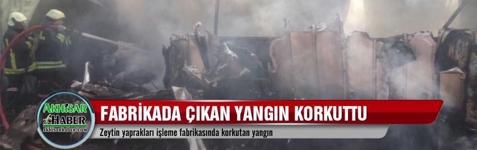 Zeytin yaprakları işleme fabrikasında korkutan yangın
