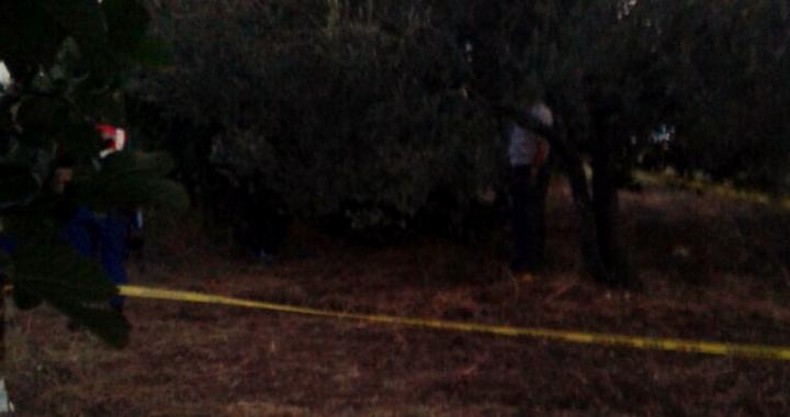 Kapaklı Mahallesinde zeytin ağacına asarak intihar etti