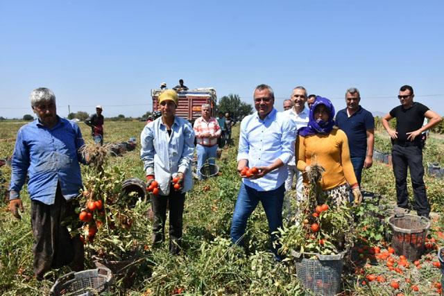 Vali Deniz, domates üreticileriyle bir araya geldi