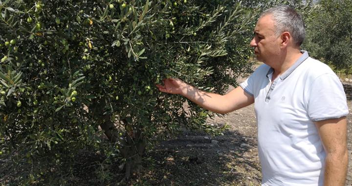 """Bakırlıoğlu: """"Tarımsal desteklemeler beklentileri karşılamadı"""""""