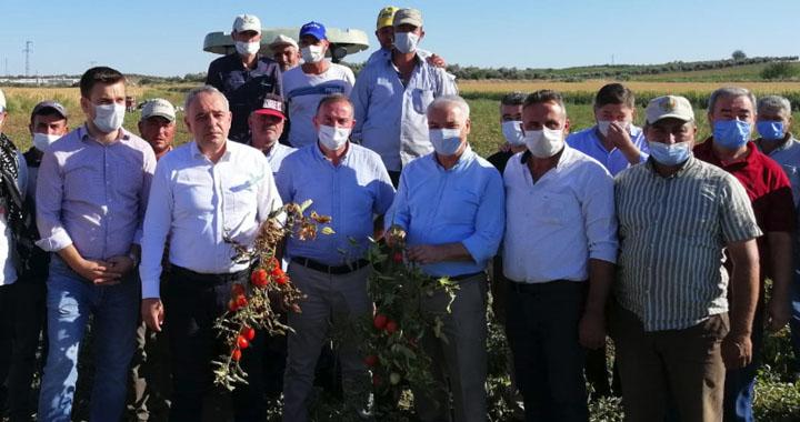Bakırlıoğlu: Türk Şeker Manisalı çiftçinin de domatesini alsın!