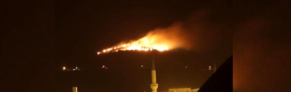 Hasköy'de çıkan yangın kontrol altına alındı