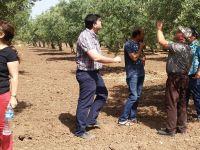 Akhisar'da Üreticilere Yerinde Eğitim Devam Ediyor