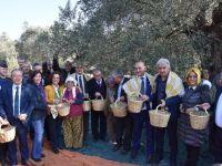 Dünya Zeytin Günü Akhisar'da kutlandı