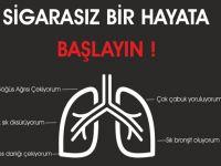 Sigaranın insan sağlığına etkileri