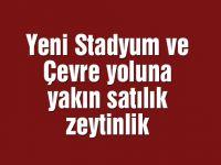 Yeni Stadyum ve Çevre yoluna yakın satılık zeytinlik
