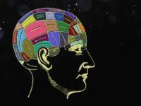 Hafıza Geliştirme Teknikleri Nelerdir