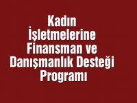 Kadın İşletmelerine Finansman ve Danışmanlık Desteği Programı Tanıtım Toplantısı