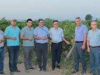 İlçe Tarım Müdürlüğü üreticileri için çalışmalarına devam ediyor