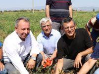 CHP, Beyoba'da çiftçinin sorunlarını inceledi