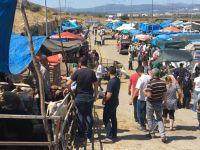 Akhisar'da Arefe Günü Kurban Pazarı Hareketli