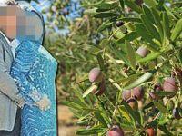 Akhisarlı zeytinci hakkında çıkan iddiaları yalanladı