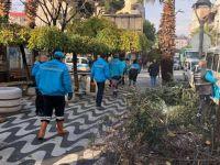 Akhisar'da Ağaçlara Kışlık Bakım