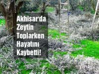 Akhisar'da zeytin ağacından düşen çiftçi hayatını kaybetti