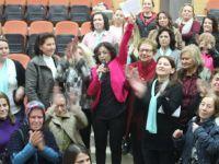 Akhisar Kent Konseyi Kadın Meclisi yeni başkanı Serpil Pehlivan oldu