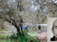 Zeytin tarlasını sürdüğü traktörünün altına kalarak can verdi