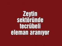 Zeytin sektöründe tecrübeli eleman aranıyor