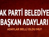 AK Parti'den açıklama, bu hafta içinde adaylar açıklanabilir