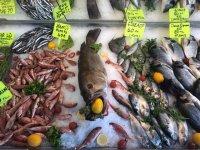 Havuz Balık evi, enfes balık çeşitleri ile sizleri bekliyor