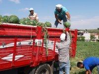 Karpuz hasadında Adana'yı yakaladık