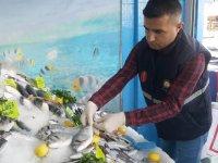 İlçe Tarım Müdürlüğünden balıkçılara denetim yapıldı