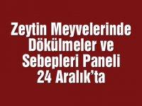Zeytin Meyvelerinde Dökülmeler ve Sebepleri paneli 24 Aralık'ta