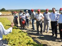 Başkan Besim Dutlulu, üzüm üreticileri ile buluştu