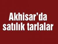Akhisar'da satılık tarlalar
