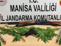 Jandarma kenevir ekimi ve kaçak kazı yapanlara göz açtırmadı