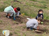 Öğrenciler, dinozor fosillerini gömdüler