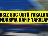 Hırsız suçüstü yakalandı, Jandarma hafif yaralandı