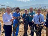 Bakırlıoğlu: Tarımsal destekler çiftçinin zararını karşılamıyor