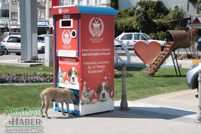 akhisar'da-sokak-hayvanlari-mamamatik-ile-beslenecek-(1).jpg