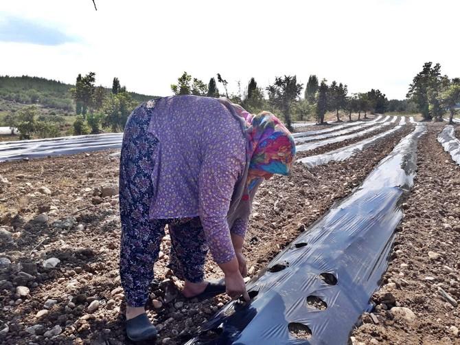 akhisar-belediyesi'nden-kadin-ciftcilere-buyuk-destek-(6).jpg