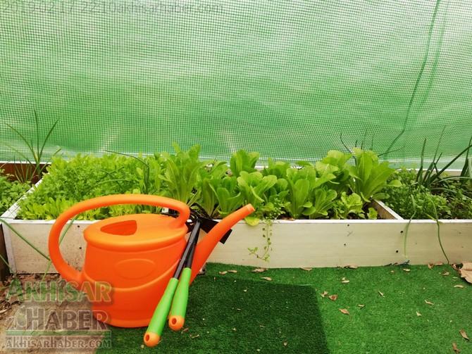 okulda-sera-greenhouse-at-school-(5).jpg