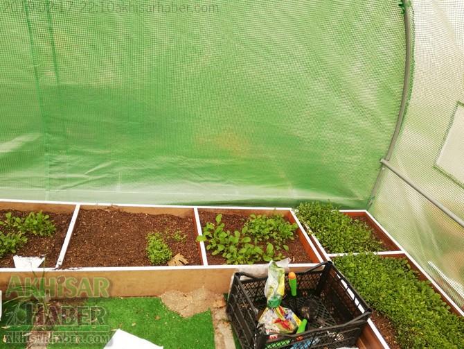 okulda-sera-greenhouse-at-school-(6).jpg