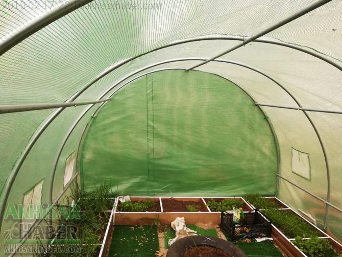 okulda-sera-greenhouse-at-school-(8).jpg