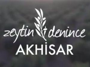 Zeytin denince Akhisar