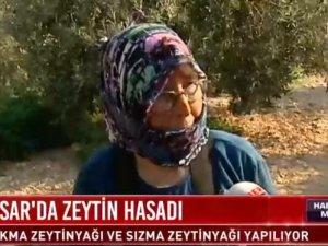 HaberTürk TV, Akhisar Zeytin Hasadı 3 Ekim 2019 tarihli Canlı Yayın