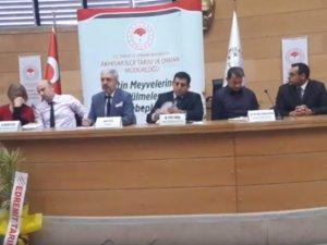 Akhisar İlçe Tarım Müdürlüğünden Zeytin meyvelerinde dökülmeler ve sebepleri paneli
