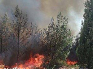 Bünyaniosmaniye'deki yangın kontrol altına alındı